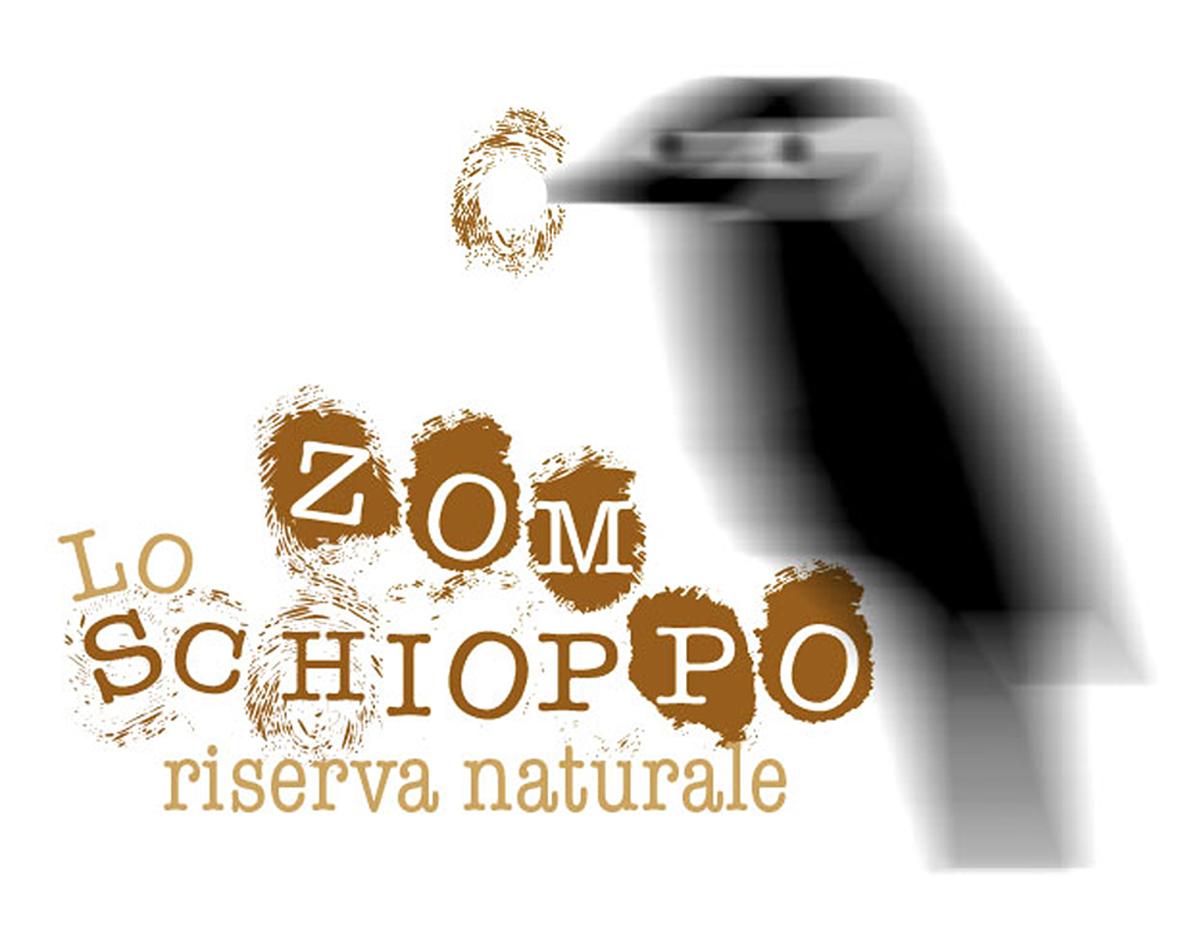 picchio